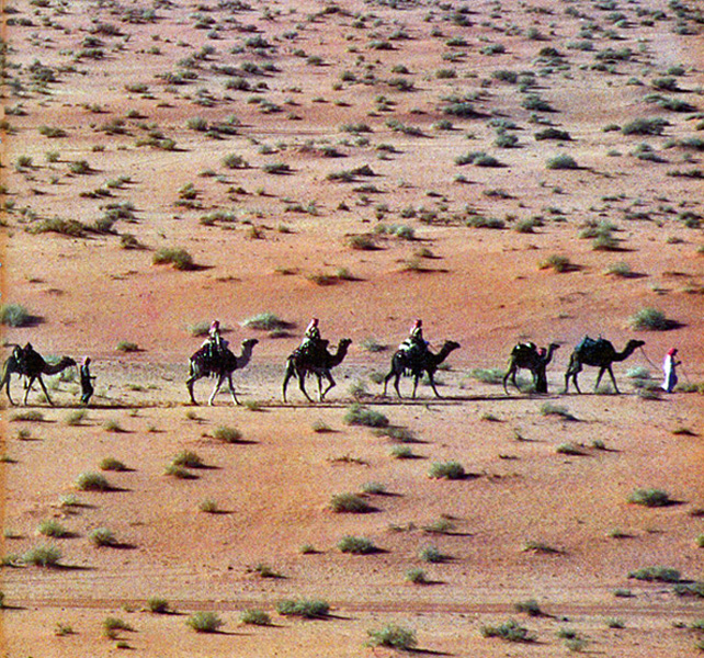 An Arab caravan crossing the desert.